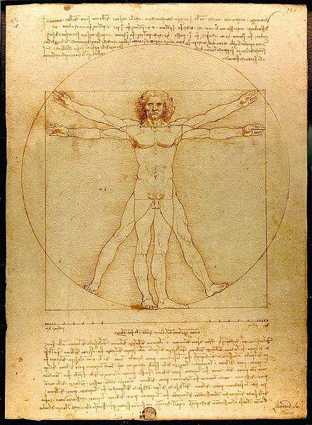 Божанска пропорција Da_Vinci_Vitruve_Luc_Viatour